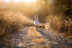 Walk (sveta_butko) Tags: road sunlight girl beauty childhood cat child dress joy happiness
