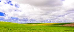 paisaje 92 (rokobilbo) Tags: sky field grass clouds rural walk meadows castilla