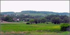 Spring landscape (Stella VM) Tags: green field grass spring village hill bulgaria vitosha          murchaevo