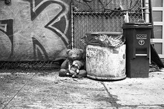 Is there a recycle place for old memories.  Like a place where you put your past fears, attachments, struggles, and it all gets grinded and turned into chipotle napkins. A place where your favorite stuffed animal can be left rotting away, while you're off (jev) Tags: bear nyc blackandwhite bw film animal animals brooklyn analog trash zeiss mono wildlife pooh williamsburg beast winniethepooh winnie creatures creature mammals beasts zoology filmphotography kodaktmax400film filmshooter istillshootfilm zeissikonzm undomesticatedanimals buyfilmnotmegapixels