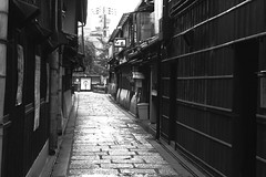 Gion-shirakawa-no11 (captain) Tags: kyoto gion shirakawa