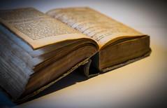 1837 (Fay2603) Tags: old writing buch book ancient pages indoor schrift schrfentiefe alte 1837 antiquitt buchseiten