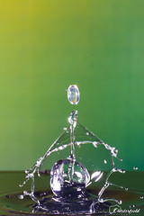 DSC00631 (David.Chesterfield) Tags: art water drops splash