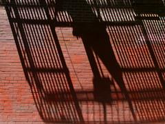 shadow (Jef Poskanzer) Tags: shadow t geotagged bricks fireescape rossalley geo:lat=3779577 geo:lon=12240742