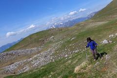 camminando negli alti pascoli (Tabboz) Tags: panorama primavera erba montagna strade cima prati vetta pascoli prealpi fioriture