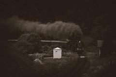 475.196 + 78.619 ( GEG ) (michalvboh) Tags: train steamtrain trains locomotives steamlocomotives historical rail railway railroad