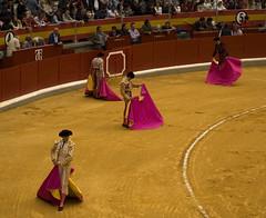 Granada, Plaza de Toros (Francesco Merini) Tags: andaluca granada toros andalusia bullfight corrida capote torero feriadelcorpus palazadetoros ngelcasas