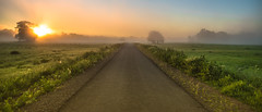 path into the unkown (bocero1977) Tags: road street morning blue trees light sunset sky sun mist green nature colors field fog clouds germany way landscape nikon outdoor path foggy straight dust rosslau