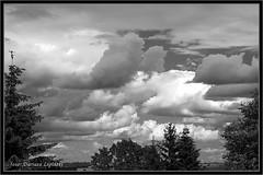 Chmury / clouds 18_06_2016 B&W (dariusz_lipinski) Tags: park flowers trees sky blackandwhite bw sun colour nature beauty clouds fun photography europa europe different wind joy poland polska fotografia kwiaty inny zabawa soce przyroda kolor wabrzych chmury niebo walbrzych drzewa rado wiatr pikno lowersilesia czarnobiay dolnylsk dariuszlipinski dariuszlipiski dariuszlipiskiwabrzych dariuszlipinskiwalbrzych