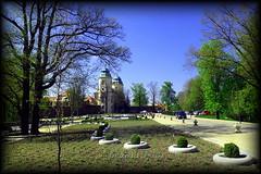 Jest droga, ktra wiedzie nas do ... Zamku Ksi :) (Renata_Lipiska) Tags: sky tree castle nature spring path poland polska natura wiosna zamek drzewo wabrzych niebo ksi ksiaz lowersilesia cieka dolnylsk ksiaskiparkkrajobrazowy ksilandscapepark