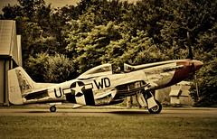 P 51 Mustang 1-1 (GhostOfDorian) Tags: usa canon mustang airforce flugplatz p51 flugtag breisgau 2weltkrieg jger kampfflugzeug bremgarten jagdflugzeug sigmazoom eos600d