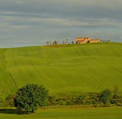 autour de Pienza , Toscane (jean-marc losey) Tags: primavera spring italia vert villa pienza toscana valdorcia toscane printemps italie champ d700