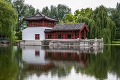 Reflections (Infomastern) Tags: berlin germany garden deutschland pond damm tyskland gardensoftheworld trdgrd grtenderwelt dererholungsparkmarzahn