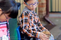 Petting his new friend (Stinkee Beek) Tags: erin ethan fremantle