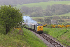 Running up that Hill (Treflyn) Tags: blue castle english heritage electric train br diesel 5 rail railway loco class type british locomotive preserved 55 society corfe gala swanage preservation dps clag deltic 55019 royalhighlandfusilier