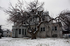 (fozuel) Tags: usa house snow tree fall abandoned arbol casa nieve invierno seco abandonada