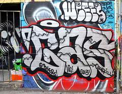 Toronto Graffiti 2013 -8225 (sniderscion) Tags: street urban toronto ontario canada color colour art scott graffiti poser intense nikon paint bright g vivid canadian spray vandalism nikkor 18200 snider 3556 sniderscion d7000 nikkor182003556g