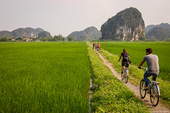Rice Field Cycling (Eduardo Bassotto) Tags: bike vietnam ricefield nationalgeographic tamcoc