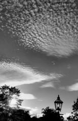 #GodIsAnArtist (Wishtography) Tags: sky blackandwhite clouds cloudporn skyporn iloveclouds godisanartist streamzoo fortheloveofblackandwhite keeplookingtotheskies cloudskeepgoingby