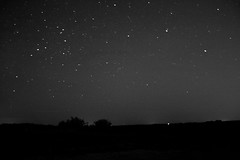 Stars In The Northern Sky (The Cleveland Kid) Tags: longexposure nightphotography blackandwhite bw nature wisconsin stars star evening madison verona wi stargazing starscape starshots starsinthesky