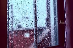 (....) e quando penso, (Alice de Carvalho) Tags: love canon chuva janela pensamentos caiof