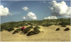 # RED #  -  Playing hide and seek in the beautiful dutch dunes near Bergen aan Zee (Fr@nk ) Tags: girls sea boys dutch umbrella sand europe hiking dunes sony thenetherlands hideandseek northsea parasol gps bergen noordholland garmin schoorl nudists nextime bergenaanzee dekerf 2816mm nex5 mrtungsten62 frankvandongen wwworvilnl