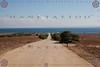 SARDEGNA 2013 - Hank & Giada in Tour @ 01 - 11716 (hanktattoo) Tags: sardegna parco tour bis hank duro 41 isola asinara carcere naturale 2013 41bis ghinada