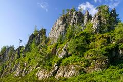 Der Groe Pfahl (augustin.nagl) Tags: bayern deutschland stein baum tiltshift bayerischerwald pce pfahl quarz viechtach geotop naturparkbayerischerwald groserpfahl