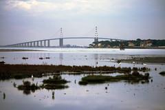 Pont de Saint-Nazaire (olyv70) Tags: bridge france river pont fleuve saintnazaire atlantique ocan estuaire loireatlantique laloire saintbrevinlespins