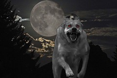 hounds at the back door...... (starc283) Tags: halloween spooky elements adobeelements