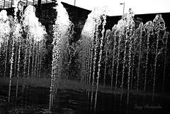 (Deppy 7) Tags: blackandwhite water nikon waterdrops