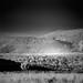 Fox Mountain, Big Valley, California in infrared, 760nm IR filter