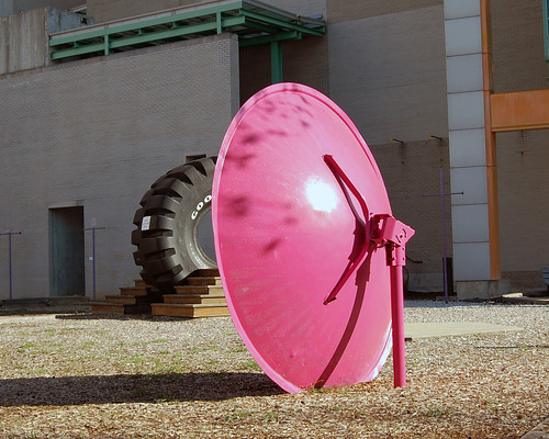 Pink Dish and Black Tire