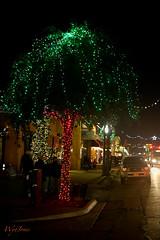 Merry Christmas from Grapevine, Texas (wyojones) Tags: christmas windows red usa green store streetlight mainstreet doors texas garland christmaslights sidewalk coloredlights np christmastrees merrychristmas grapevine tarrantcounty christmasseason wyojones christmassaeson thechristmascapitaloftexas