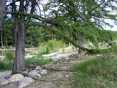 Garner State Park & Frio River, Texas (yellowroseoftexasmindy) Tags: trees river texas frio garnerstateparkarea