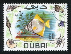 Dubai 0008 m (roook76) Tags: ocean old sea wild fish 1969 nature animal fauna vintage zoo ancient marine dubai underwater message graphic mail antique wildlife postcard historic retro stamp cover seal envelope ichthyology letter aged postage moonfish postmark philately zoology