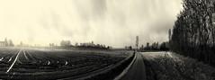 #85 (UBU ♛) Tags: blackwhite noiretblanc blues nebbia biancoenero blupolvere ©ubu unamusicaintesta landscapeinblues bluubu luciombreepiccolicristalli