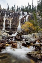 Tangle Falls - Portrait (thephantomhennes) Tags: landscape rockies waterfall jasper canadian falls hennes tangle