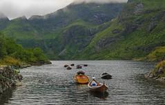gvatnet p  i Lofoten (Torbjrn Tiller) Tags: norway norge lofoten nordlandsbt trebt ilofoten gvatnet