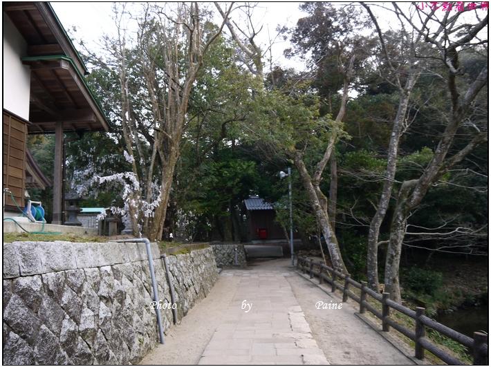鳥取白兔神社 (17).JPG