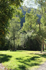 Picnic (Julianne Baker) Tags: park trees newzealand bench wellington rivendell juliannebaker