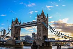 River Thames (yve1964) Tags: sunset sun london tower water towerbridge river dolphin mermaid riverbank riverthames barge shards thamesclipper