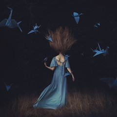 imagination found (brookeshaden) Tags: blue selfportrait birds fairytale flying soft darkness free surreal bluejay imagination flowing whimsical brookeshaden