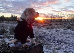 Rona (cocopie) Tags: sunrise rona