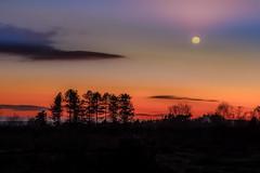 Moon rise (Eric Goncalves) Tags: winter light england cold color nature beautiful canon landscape vibrant gloucestershire 6d ericgoncalves