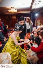 DSC_9879 (Neko11()) Tags: wedding portrait  neko                                           neko11