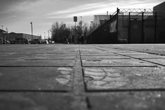 Untitled B&W Urban Study (Jeffrey Deal) Tags: park street people urban bw white black field contrast 35mm canon print foot blackwhite high parkinglot dof 14 lot highcontrast sigma depthoffield sidewalk study and 5d practice shallow depth footprint backandwhite mrkii canon5dmrkii sigma35mm14