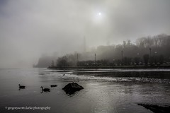 First Fog of 2016 - off of Victoria Island. (gregoryscottclarke photography) Tags: river spring downtown ottawa rideaucanal victoriaisland thelocks