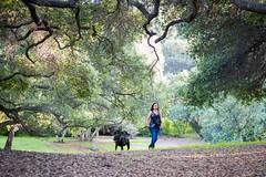 DSC_4264 (lauripiper) Tags: california park portrait woman dog girl mutt rottweiler pitbull amstaff americanstaffordshireterrier nikond810