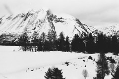 (Louise de Cours) Tags: trees winter blackandwhite mountain art film nature forest photography nikon hiking lifestyle explore 55mm 2015